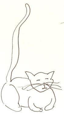 TAD fave cat