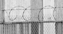 Barbed Coil 2,cropped,BW,lowres