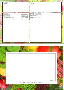 seed file