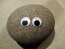 a photo of a rock with some googly eyes stuck to it