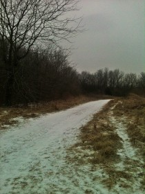 A snowy path in Burr Oaks park, Independence, MO. Feb 1 2014